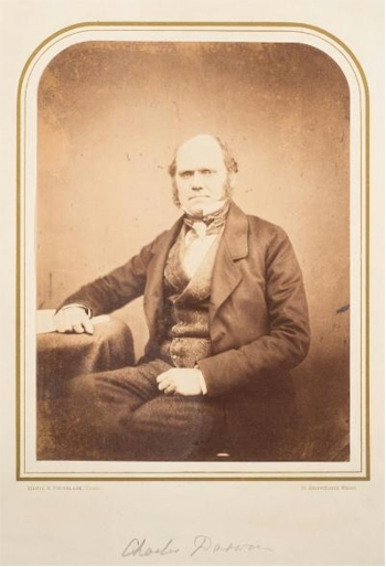 A rare photograph of Charles Darwin (BK18/336) fetched £5,200.