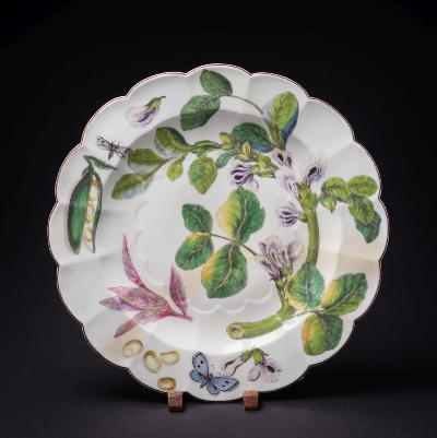 A rare large Chelsea 'Hans Sloane' dish with lobed rim, painted with botanical specimens, a bean pod and a group of four beans, a butterfly and a moth, brown line rim, circa 1755, 32cm diameter [broken across and restored, originally stapled].