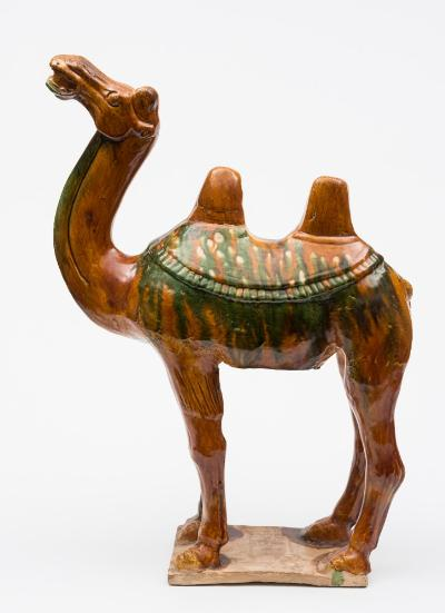 A large Chinese sancai-glazed pottery figure of a camel with head raised and mouth open, standing four-square on an unglazed rectangular base, Tang Dynasty, 57cm high [some restoration]. * Together with Oxford Authentication Report, sample no.C199q99.