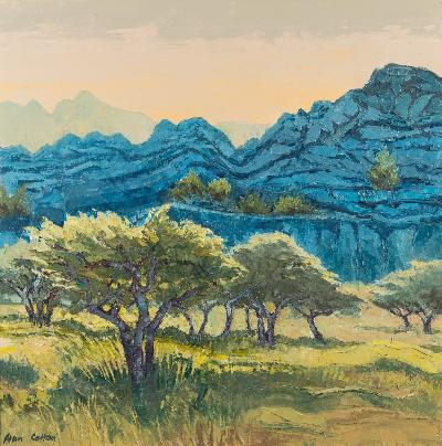 Sale FS41; Lot: 0368: Alan Cotton [b 1936] - Provence - Olive Orchard Towards Evening,- signed, oil on canvas, 61 x 61cm.