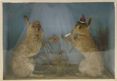 An early 20th century cased set of anthropomorphic hares, each wearing a straw boater, one with monocle and matchbox, the other with cigarette and match, naturally set in a glazed case signed 'W H Rowe Naturalist', the case 47cm x 66cm x 17cm.